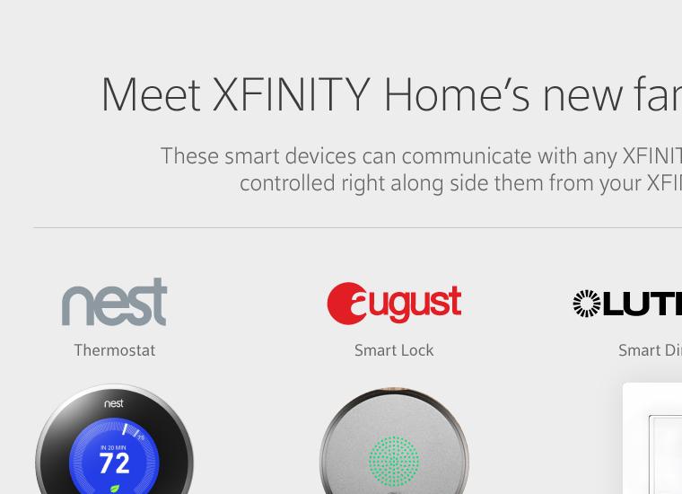 screenshot of home security marketing website