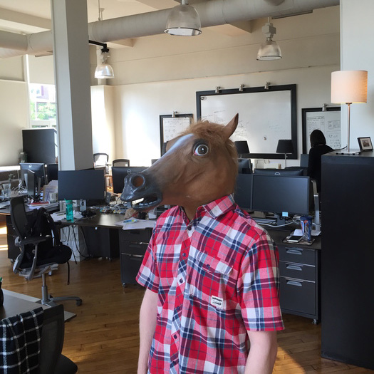 chad-horse-cropped